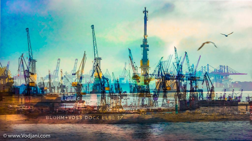 Hafen Möven - I