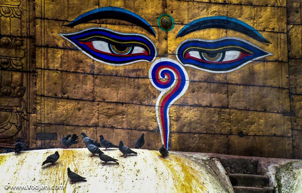 Tibet   Nepal   India